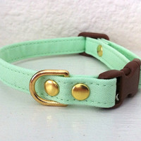 Mint Green Dog Cat Collar Organic Cotton