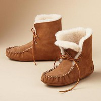 Moxie Short Boots | Robert Redford's Sundance Catalog