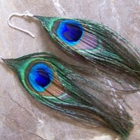 Earrings Peacock Feather Iridescent Dangles Sterling Silver 538 | Seabreezejewels - Jewelry on ArtFire