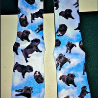 SWEET LORD O'MIGHTY! PUGS ON CLOUD9 SOCKS