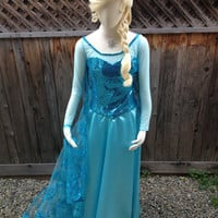 Elsa Frozen Sparkly Snow Queen Version C Adult Costume Custom Made