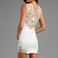 DRESS THE POPULATION Elizabeth Tank Dress with Crochet Detail in Ivory