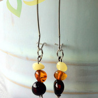 Adult Baltic Amber Dangle Earrings. Made with 100% Baltic polished amber, mixed colors.