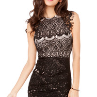 Lovecat Lace Lady Dress