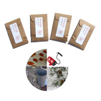 Christmas Snow Candy Scented Sachets - Maple Pine Scent - DIY Dinner Place Cards or Get Them Personalized - Modern Rustic Red Brown