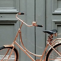 Van Heesch's Dutch Inspired Metallic Bicycles | GBlog