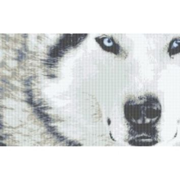 Counted Cross Stitch|White Wolf