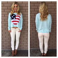 Baby Blue America Love Knit Crop Sweater