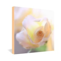 Lisa Argyropoulos Dreams Gallery Wrapped Canvas