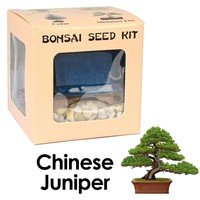 Eve's Chinese Juniper Bonsai Seed Kit, Woody, Complete Kit to Grow Chinese Juniper Bonsai Tree from Seed