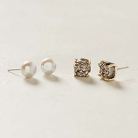 Festina Earring Set