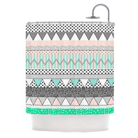 "Vasare Nar ""Chevron Motif"" Pink Teal Shower Curtain"