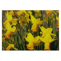Yellow Daffodils Glass Cutting Board