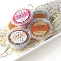 Soy Tarts - Lots of Yummy Stuff Soy Candle Melt Collection -- (5) Two Ounce Tarts
