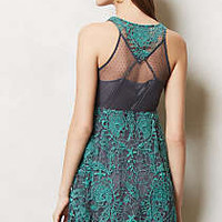 Arabesque Dress