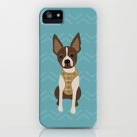 Boston terrier chihuahua mix dog (Bochi) - Green iPhone & iPod Case by mollykd