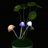 Innoo Tech**Avatar Multi-color color changing mushroom LED Light auto-induction night light for Thanksgiving Gift and Christmas, Indoor Decoration