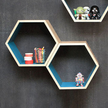 Blue Hexagon Bookshelf