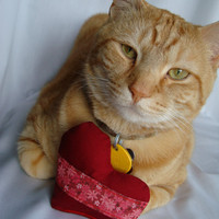 Catnip toy cat heart toy  red heart cat toy  flower by BaxCatandCo