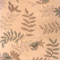 Delhi 11 Beige Rug By Momeni Area Rugs