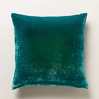 Ombre Velvet Pillow by Kevin O'Brien