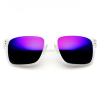 Men's Action Sports Frosted Color Aviator Sunglasses With Flash Revo L