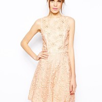 Warehouse Organza Flower Embroidered Dress