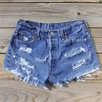 Vintage 70's Distressed Shorts