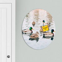 Lisa Argyropoulos Ducks Oval Magnet Board