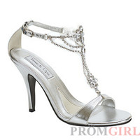 Princess Silver Shoe