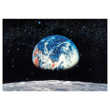 I liked this design on #Fab. Earth And Moon Mural 8'10x12'9