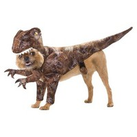 Raptor Pet Costume