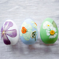 Shop the Project: Pressed Flower Easter Eggs