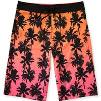 Palm Tree Gradient Boardshorts