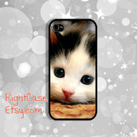 KITTEN IPHONE 5S CASE Animal Lovely Baby Cat iPhone 4 Case iPhone 5 Case iPhone Case Samsung Galaxy S4 S3 Cover iPhone 5c iPhone 4s case