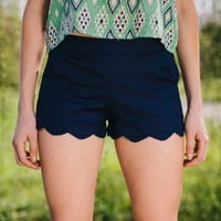 Dreaming of Navy Scallop Shorts - Lotus Boutique