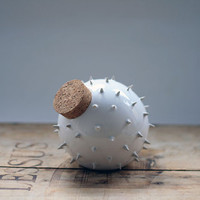 Modern designed spiky ceramic jar inspired by Blowfish