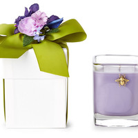 9 oz French Lavender Candle BoxLUX FRAGRANCES