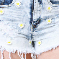 Hippie Air High Waisted Shorts