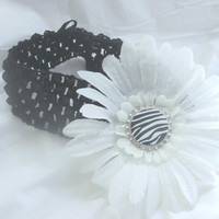 Black and White Zebra Daisy Headband