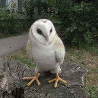 Life sized needle felted Barn owl by HandmadeByNovember on Etsy