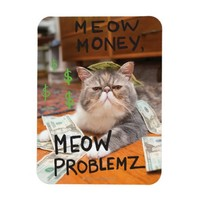 Meow Money, Meow Problemz