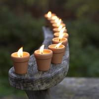 Citronella Candles — Cox  Cox, the difference between house and home.