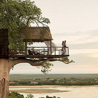 Tree House Somewhere in Africa?
