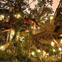 An Ultimate Tree House--Tarzan&#x27;s Tree House