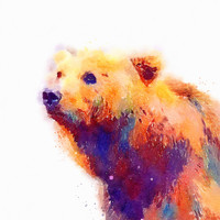 The Protective - Bear Stretched Canvas by Jacqueline Maldonado | Society6