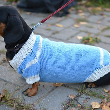 Dog Sweater Clothes Hand Knitting  dachshund warm blue medium dog