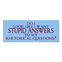 Stupid Answers to my Rhetorical Questions Print from Zazzle.com