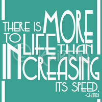 QUOTE There is more to life than increasing its by Lexiphilia