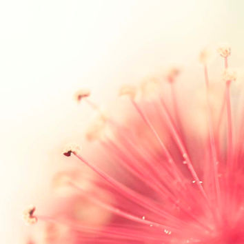 Pastel Flower Photography, Pink Yellow Peach Abstract Baby Girl Nursery Decor, Summer Hibiscus Garden